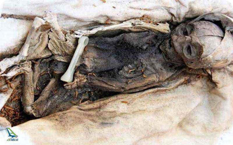 جسد کشف شده در ارگ بم
