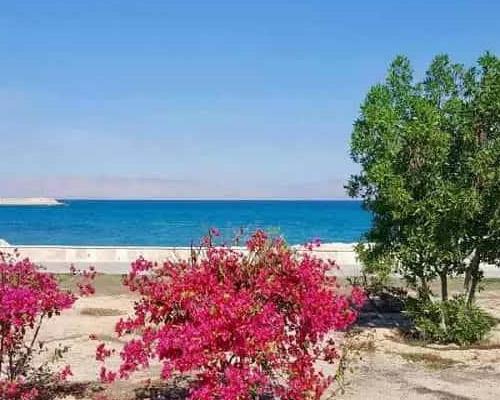 جزیره زیبا کیش