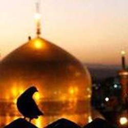 تور مشهد 31 خرداد 98